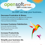 OpenSoft Group Excelitis Flyer
